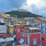C'è un Vigneto a Napoli ? SI