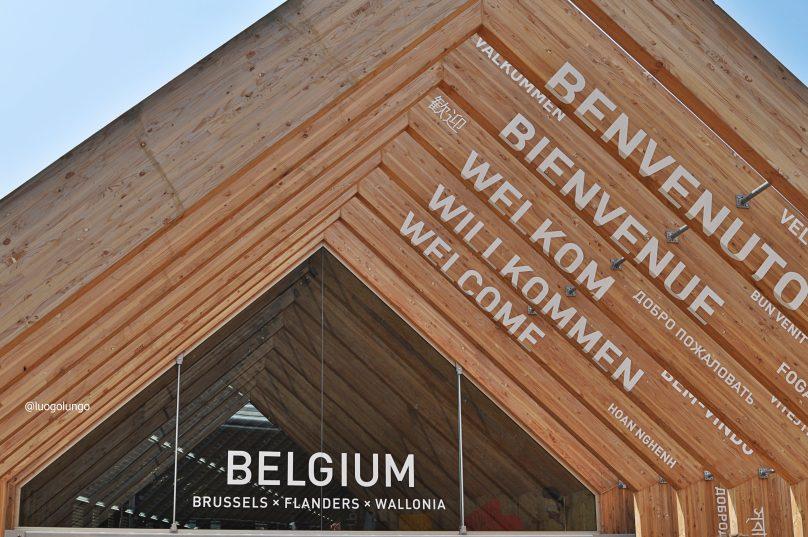visita all' Expo 2015 _ padiglione Belgio_luOgoluNgo