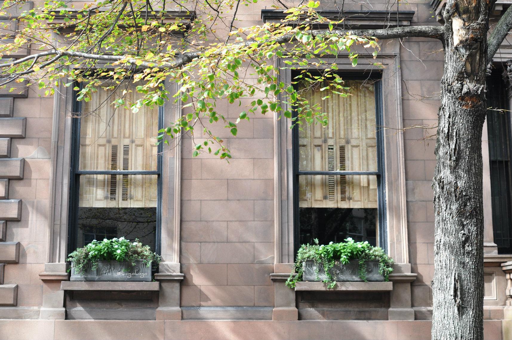 Le finestre di brooklyn luogo lungo - Verniciare le finestre ...