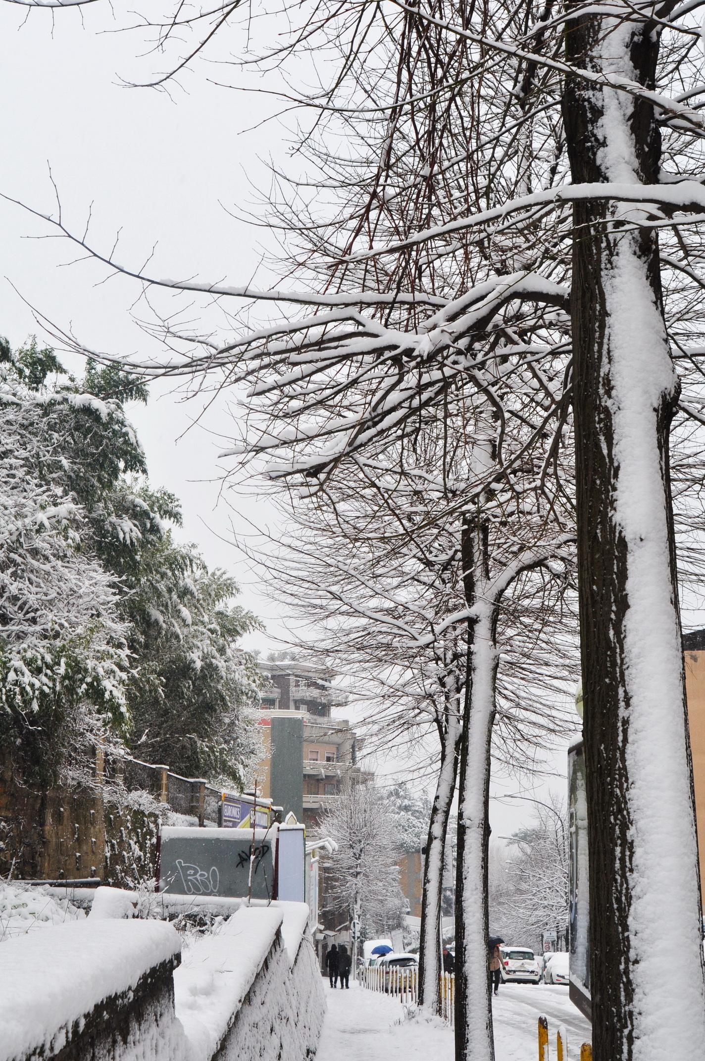 Giulio Palermo sotto la neve