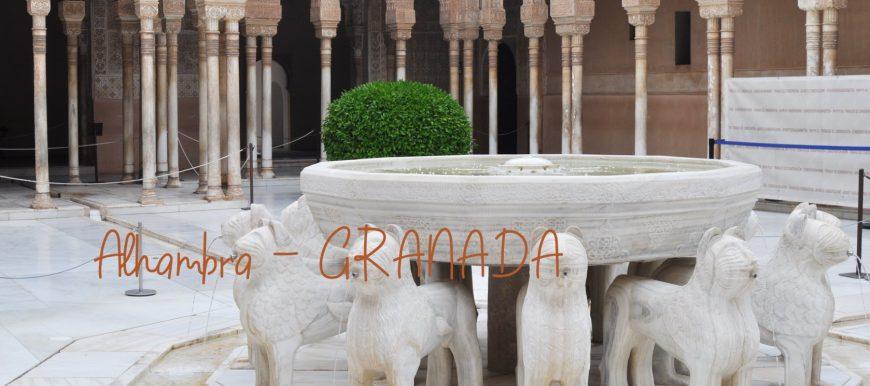 Viaggio Alhambra Granada