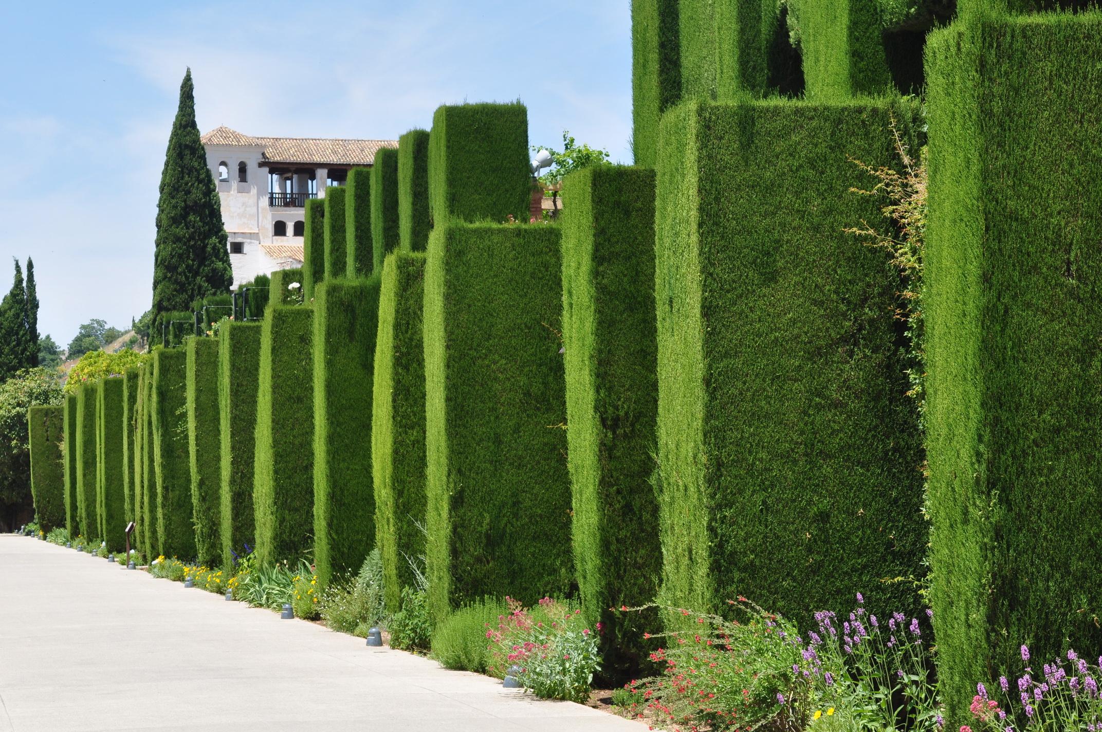Se decidi di andare a Granada non puoi perderti l'Alhambra