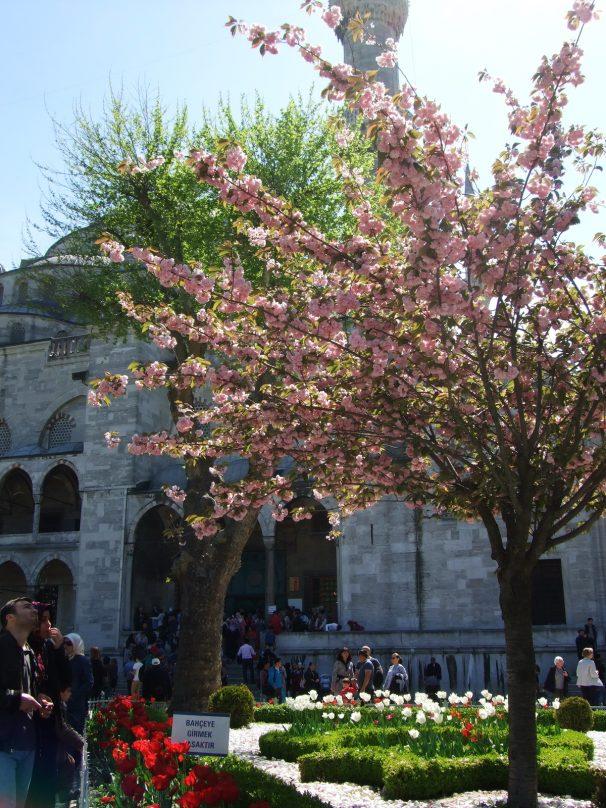 ISTANBUL_Sultanahmet_10