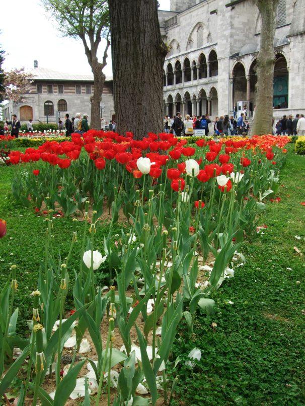 ISTANBUL_Sultanahmet_4