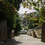 Un Palazzo,una Reggia e la realizzazione di una strada : era Corso Napoleone